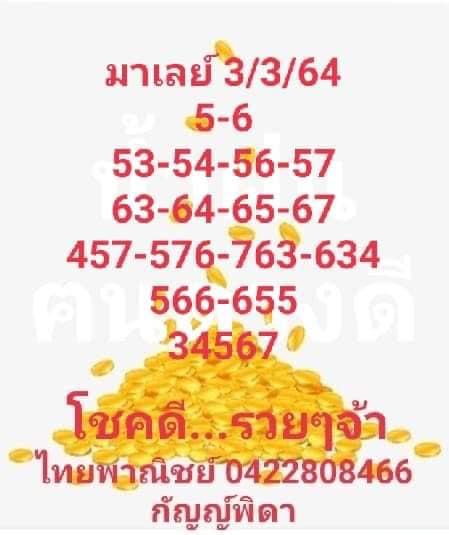 แนวทางหวยมาเลย์3-3-64-ruayvip1
